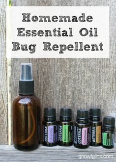 Homemade Essential Oil Bug Repellent with doTERRA Essential Oils Mosquitos, Essential Oil Uses, Essential Oil Bug Spray, Mosquito Repellent Essential Oils, Best Mosquito Repellent, Doterra Essential Oils, Doterra Blends, Melaleuca, Natural Oils