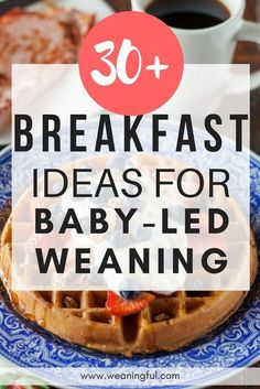 Baby led weaning breakfast ideas - blw healthy breakfast recipes for introducing. Baby led weaning breakfast ideas - blw healthy breakfast recipes for introducing solids - great finger foods and first foods for 6 months, 9 months, Baby Led Weaning Breakfast, Baby Led Weaning First Foods, Baby Breakfast, Baby First Foods, Baby Finger Foods, Blw Breakfast Ideas, Baby Led Weaning Recipes 6 Months, 1 Year Old Breakfast, Breakfast Ideas For Toddlers