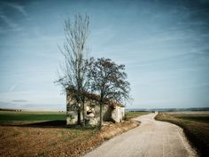 Cool Websites, Your Design, Country Roads, Nature, Landscapes, Earth, Paisajes, The Great Outdoors, Scenery