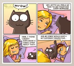 The one about point of view   Catsu The Cat