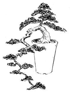FÓRUM do Atelier do Bonsai - Mário A G Leal :: Exibir tópico - Que vaso devo usar para cascata?