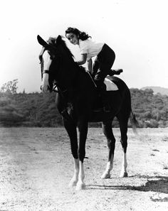 "King Charles (the Pie) and Elizabeth Taylor ""National Velvet"""