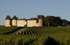Les 5 choses à savoir sur le Château d'Yquem