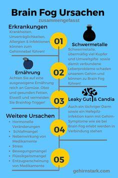 Brain Fog Ursachen infografik Leaky Gut, Stress, Brain Fog, Leiden, Allergies, Sleep Deprivation, Mood Swings, Brain, Infographic