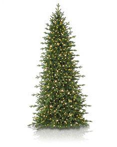 263 best christmas tree shopping images rh pinterest com