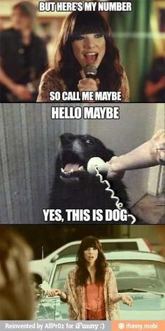 Hello maybe this is dog!!