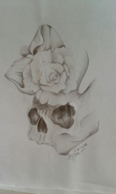 Contrast between a rose at full bloom and a skull