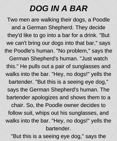 Dog At The Bar (Funny Story) | FUNSALOT | Toastmasters