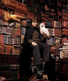 harry potter movies Daniel Radcliffe as Harry Potter Harry James Potter, Images Harry Potter, Mundo Harry Potter, Harry Potter Films, Harry Potter Quotes, Harry Potter Fandom, Harry Potter Hogwarts, Harry Potter World, Harry Ptter