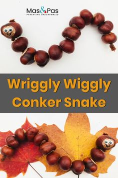 Wriggly wiggly conker snake