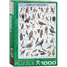 Birds of Prey & Owls - 1000 Piece Jigsaw Puzzle