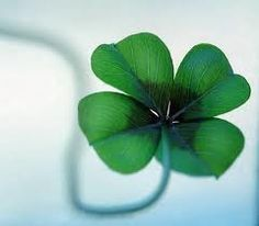 In Irish tradition, a Shamrock supposedly represents the Holy Trinity - The Father, The Son, and The Holy Spirit. If a lucky clover is found, then the fourth leaf is considered to bring God's Grace.