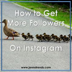 To grow your business on Instagram, you need more followers. Here's how to get more followers on Instagram.