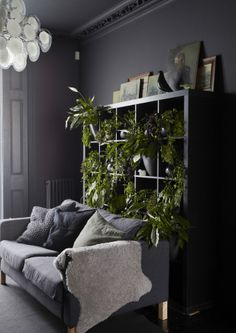 Arrange a variety of real and artificial plants on a set of shelves for impact