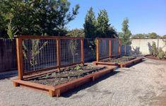 Start raised vegetable garden
