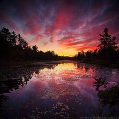 Photo by @sarahfurch c; #canada #explorecanada #nature #instatravel by canadasworld