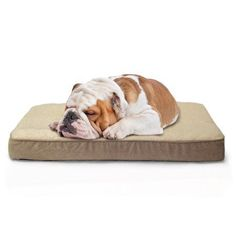 Furhaven Sm Faux Sheepskin / Suede Dlx Orthopedic Pet Bed Mat Cream/Clay, Beige