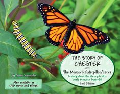 The Story of Chester - The Monarch caterpillar/larva - National Garden Bureau Monarch Caterpillar, Natural Ecosystem, Butterfly Life Cycle, Books For Moms, Gardening Books, Gifts For Your Mom, Nature Crafts, Pet Grooming, Book Gifts