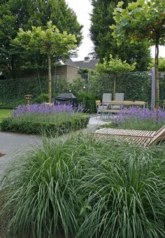 Back garden examples inspiration for back gardens! Raised Garden, Garden Landscape Design, Plants, Small Backyard Landscaping, Backyard Garden, Front Yard Decor, Back Gardens, Modern Garden, Garden Landscaping