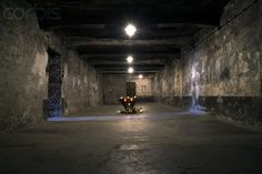 Shrine in Auschwitz Gas Chamber - 42-16014824 - Rights Managed - Stock Photo - Corbis. Auschwitz consisted of 3 main camps where it is estimated that up to 1.5 million Jews, homosexuals, Gypsies and political prisoners died by gassing, starvation and sickness.