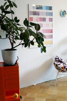 Kirppisrakkautta Plants, Plant, Planets