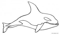Killer Whale Coloring Page