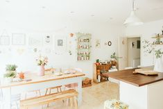 Reclaimed furniture in a new build kitchen with lots of light, space and pastel accents Decor, Home, Reclaimed Furniture, Pastel House, House Interior, New Builds, Home Kitchens, Appartment Decor, Home Interior Design