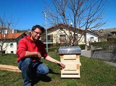Les plans de la fameuse ruche Warré... pour tous ceux qui veulent se lancer dans l'apiculture !