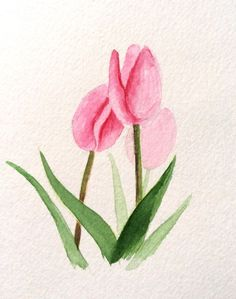 Hand painted Greeting Card 5x7Pink Tulips Blank by CardwithHeart