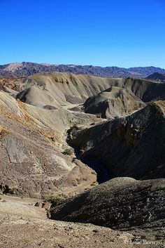 Anza-Borrego State Park, California; photo by .Isaac Borrego
