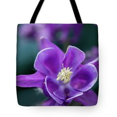 Flower Tote Bag featuring the photograph Purple Aquilegia One by Mo Barton