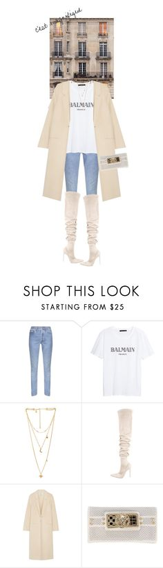"""""""Untitled #769"""" by sofiaskippari ❤ liked on Polyvore featuring Vetements, Rebecca Minkoff, Gianvito Rossi, Acne Studios and Balmain"""