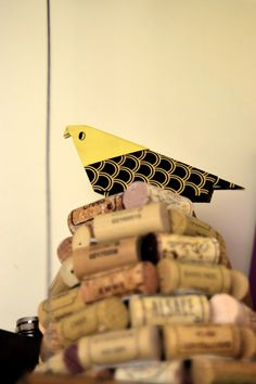 Pájaro enólogo, A. Irles
