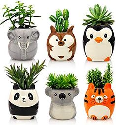 Animal Ceramic Succulent Planters Set of 6 Small Cactus, Cactus Pot, Aluminum Can Crafts, Crafts With Glass Jars, Plastic Bottle Crafts, Paper Crafts Origami, Ceramic Animals, Bottle Painting, Painted Pots