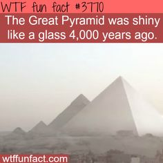 Facts you never knew about the Pyramids - WTF fun facts