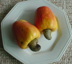This is the cashew fruit. What we eat as a cashew nut is just its seed on the bottom.