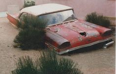 1958 Ford quite literally sinking into nature.