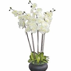 HOMESCAPES Large Oriental Style Cream Orchid with Silk Flowers in Black Round Planter Pot 79 cm tall - Artificial Flowers and Plants for Indoor Decoration Oriental Style, Oriental Fashion, Duck Egg Blue Bedroom, Marlborough House, Black Bowl, Artificial Flowers And Plants, Silk Flowers, Orchids, Glass Vase