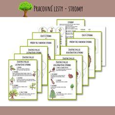 13 listů s autorskými ilustracemi, kde se podíváme na životní cyklus jehličnatého a listnatého stromu. Pojmenujeme si části listnatého stromu a taky části kmene. Získané znalosti si pak mohou děti doplnit do nevyplněných prac. listů - starší dokreslí a dopíší, mladší vystřihnout a nalepí. #stromy #zivotnicyklus #prirodoveda #prirodopis #domskolak #domskolaci #ucimesedoma #prodeti #predskolak #predskolaci #ucimese #pracovnilisty #homeschool #domaciskola #worksheets #nature #trees #naturestudy Bullet Journal, Blog, Blogging