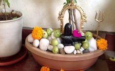 कैसे करे विधिवत नील कंठ की पूजा शिवरात्रि पर ?  हम आपको बता रहे है की भगवान शिव की पूजा शिवरात्रि पर कैसे पूरी विधि विधान से करे