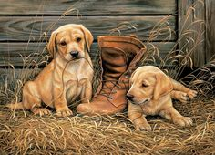 """Rosemary Millette Handsigned and Numbered Limited Edition: """"Something Old. New Framed Dog Art"""" Artist: Rosemary Millette Title: Something Old. New Framed Dog Art Size: x Medium: Open edition. Yellow Lab Puppies, Dog Puzzles, Puppy Pictures, Wildlife Art, Animal Paintings, Dog Art, Dogs And Puppies, Labrador Puppies, Cute Dogs"""