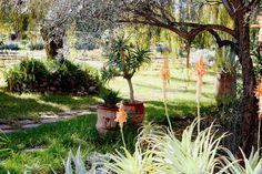 jardin bio aromatique de lourika - Jardin Bio