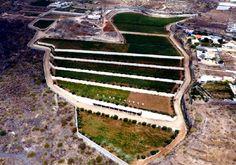 Finca La Reconda, Candelaria. 11 hectáreas. Vijariego, Castellana, Marmajuelo, Verdello. VINOS CALIUS.