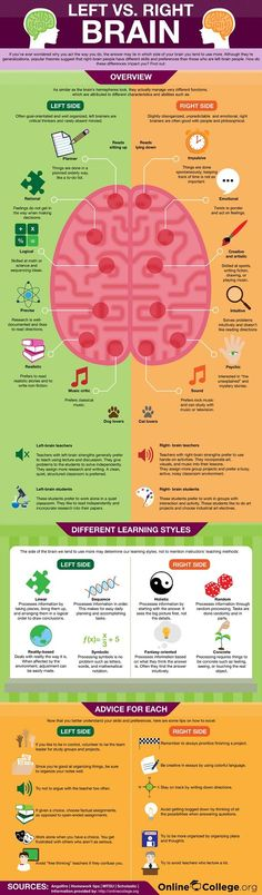 Left Brain vs. Right Brain  -- Have you ever wondered why you act the way you do? Or which side of the brain you use more? Check out this interesting infographic on the left brain and right brain.