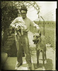 0 harold lloyd posing with his dogs