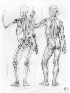 Exceptional Drawing The Human Figure Ideas. Staggering Drawing The Human Figure Ideas. Male Figure Drawing, Figure Drawing Reference, Anatomy Reference, Figure Drawing Tutorial, Human Anatomy Drawing, Body Drawing, Life Drawing, Body Sketches, Anatomy Sketches