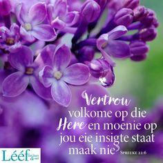 Hart, Afrikaans, Gods Love, Image, Love Of God