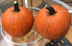 A banner year for pumpkins. Large and great for carving!