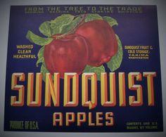 APPLE CRATE LABEL YAKIMA WASHINGTON VINTAGE ADVERTISING HALF BOX SUNDQUIST