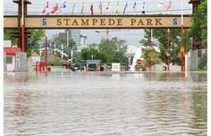 stampede p[ark under water from the big flood of the whole stampede grounds, stampede corral, and the actually the whole city - unless on high ground. O Canada, Alberta Canada, Canada Travel, Images Of Flood, Live In The Now, Banff, Natural Disasters, Calgary, Beautiful World
